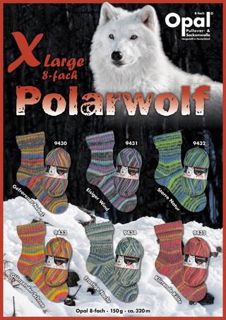 Polarwolf/北極オオカミ